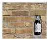 bottle in wall